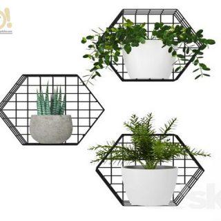 Altıgen Duvar Rafı - 3lü Metal Kafes Duvar Çiçekliği